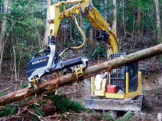 森林事業部門トップ